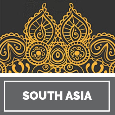 South Asian History