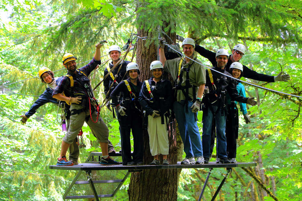 Bellevue Zip Tour — Northwest Teambuilding