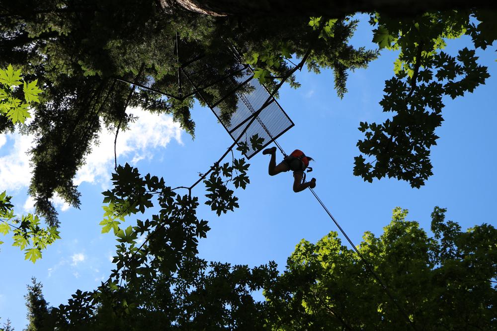 Zip Overhead.jpg