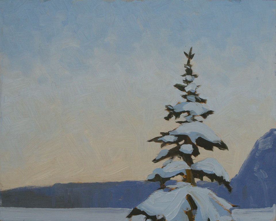 Snowy Tree at Lake Louise
