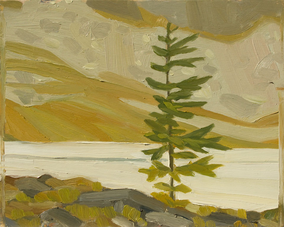 fenton-larch-opabin-plateau-2008.jpg