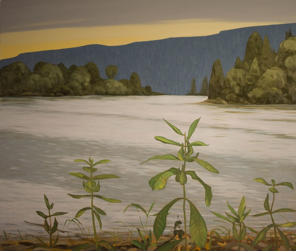 Milkweed Lake Superior - 24x30 inch