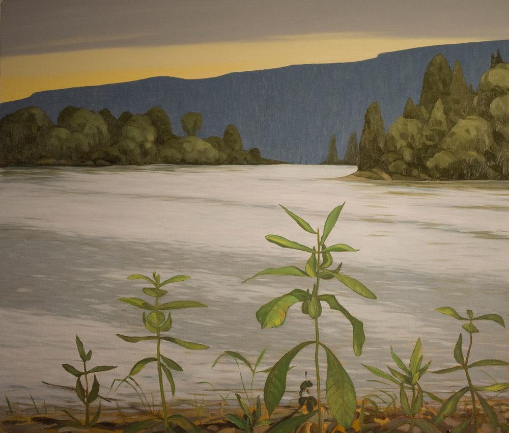 Milkweed Lake Superior - 24x30 inch