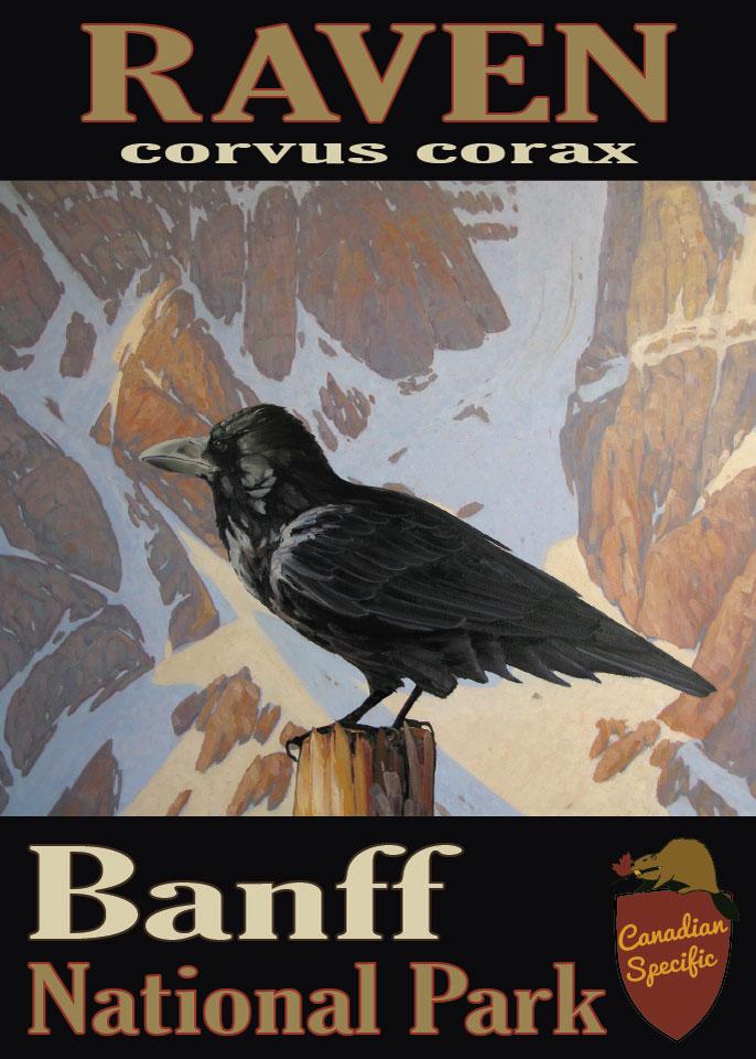 #008 Raven