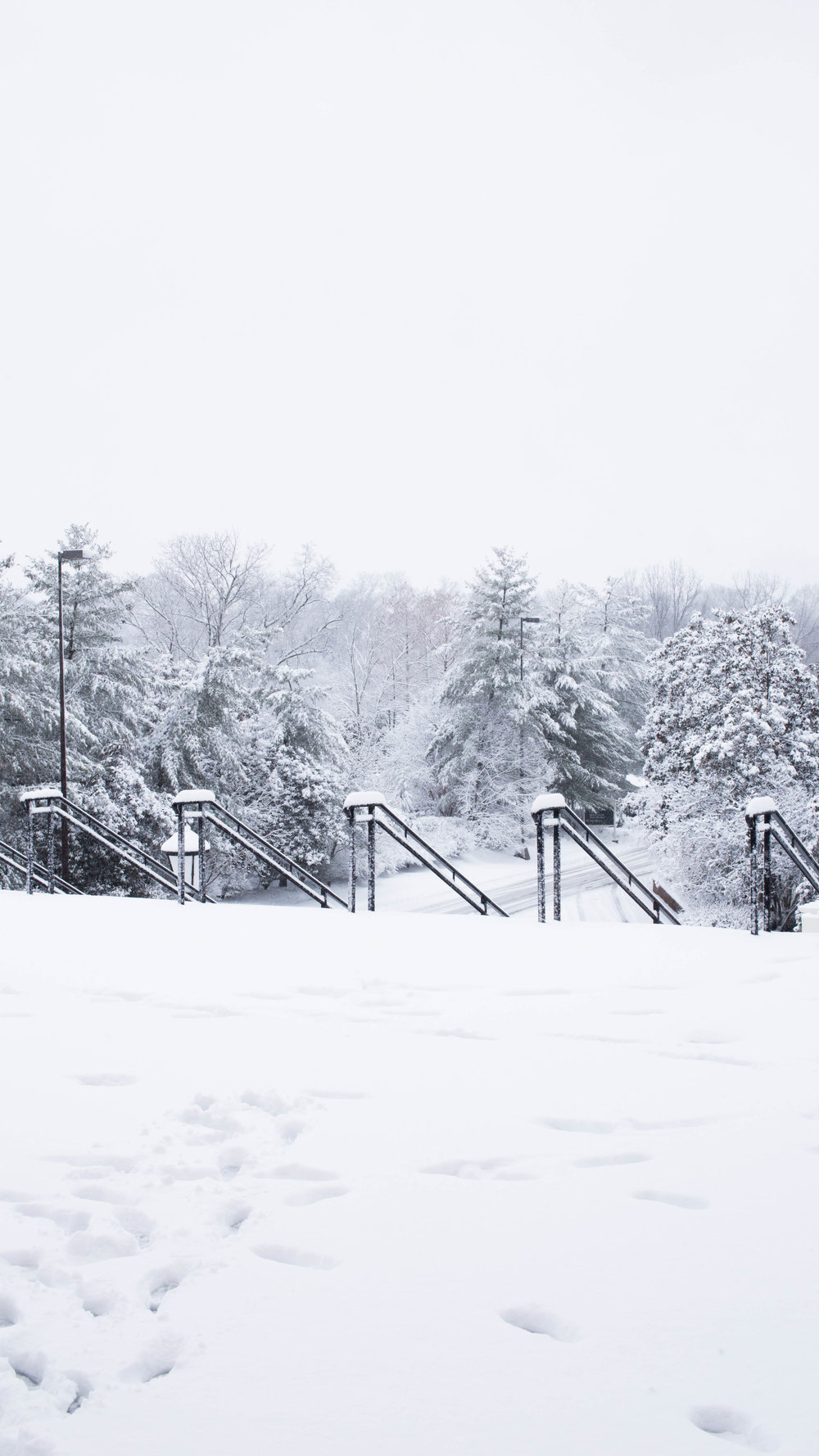 snow_2016 (1 of 2).jpg