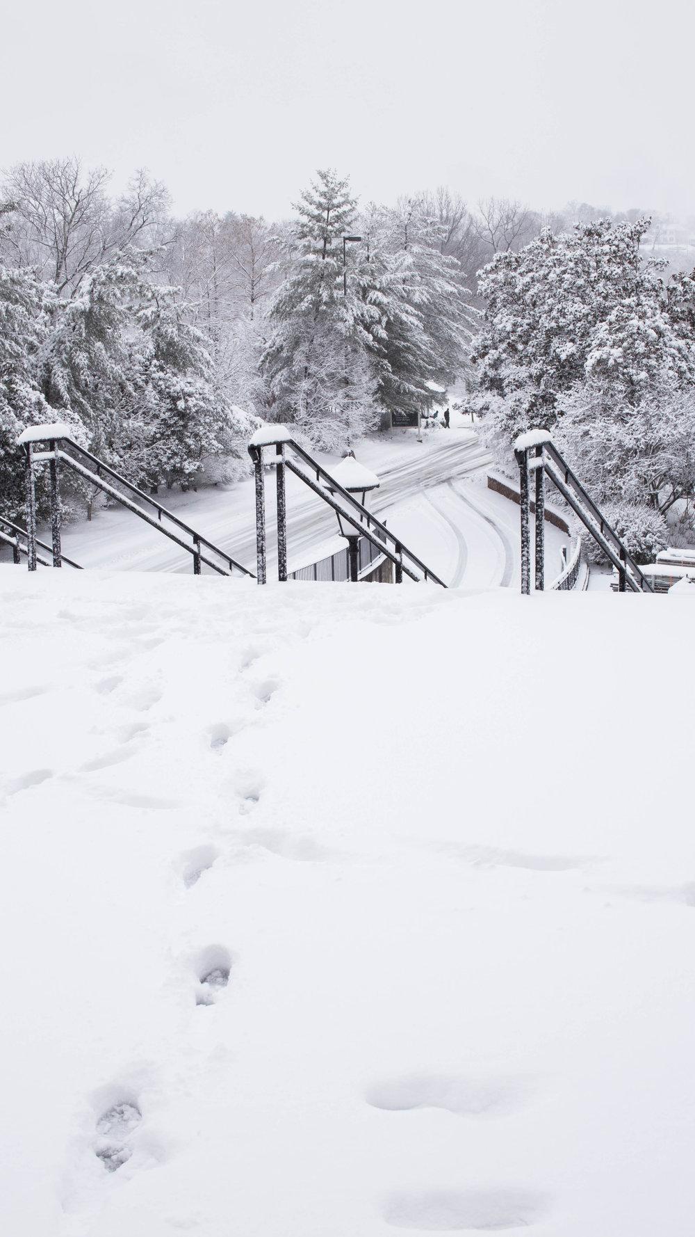 snow_2016 (2 of 2).jpg