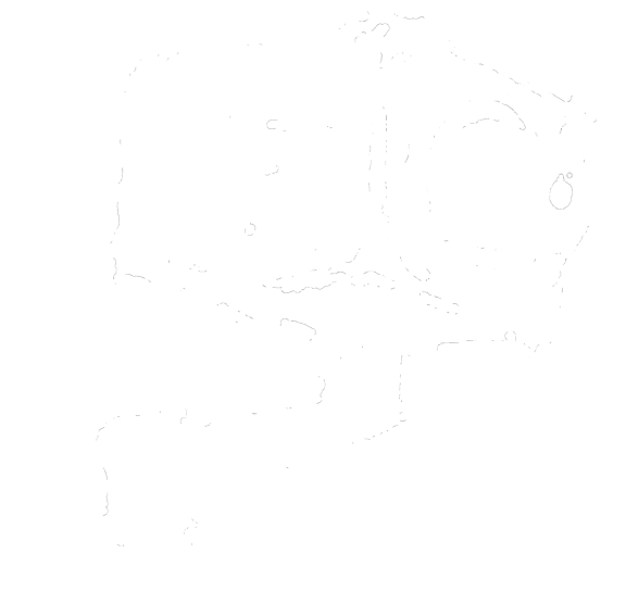 Nameless Numberhead