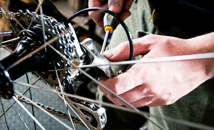 Our experienced mechanics will take great care of your bike