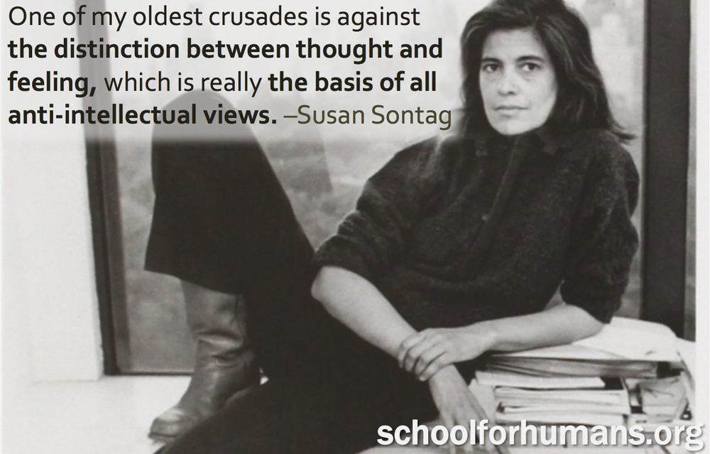 sontag-quote.jpg