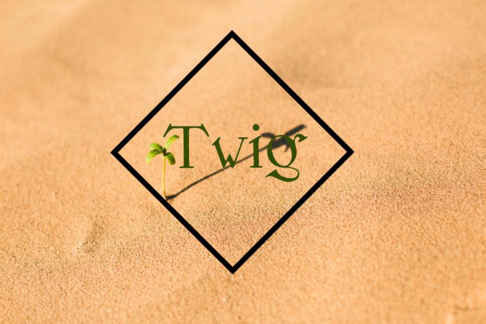 Twig.jpg