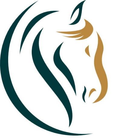 Laura Hall - Para-Equestrian & Equine Event Manager