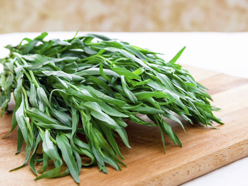 """Tarragon is a beautiful perennial that makes a great companion plant in your garden. Tarragon also comes in nonculinary varieties so make sure you select """"French Tarragon""""."""