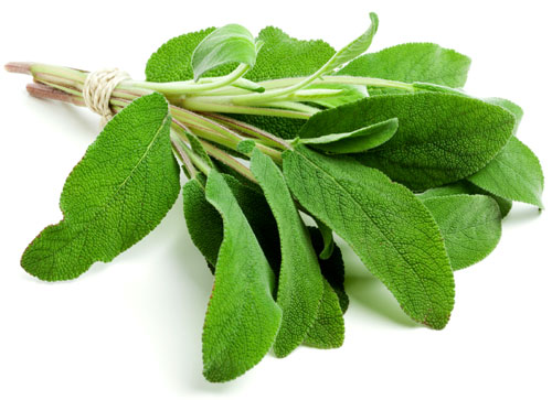 Sage comes in is a wide variety, some culinary and some not. It has a rich earthy flavor that is used in many hearty meals.
