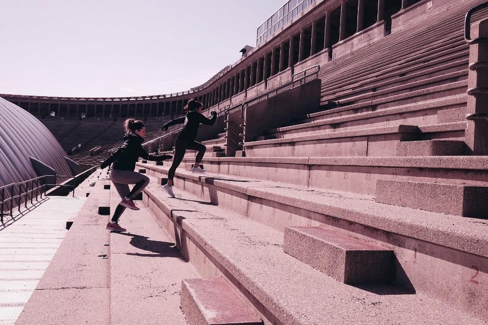 Harvard StadiYUM
