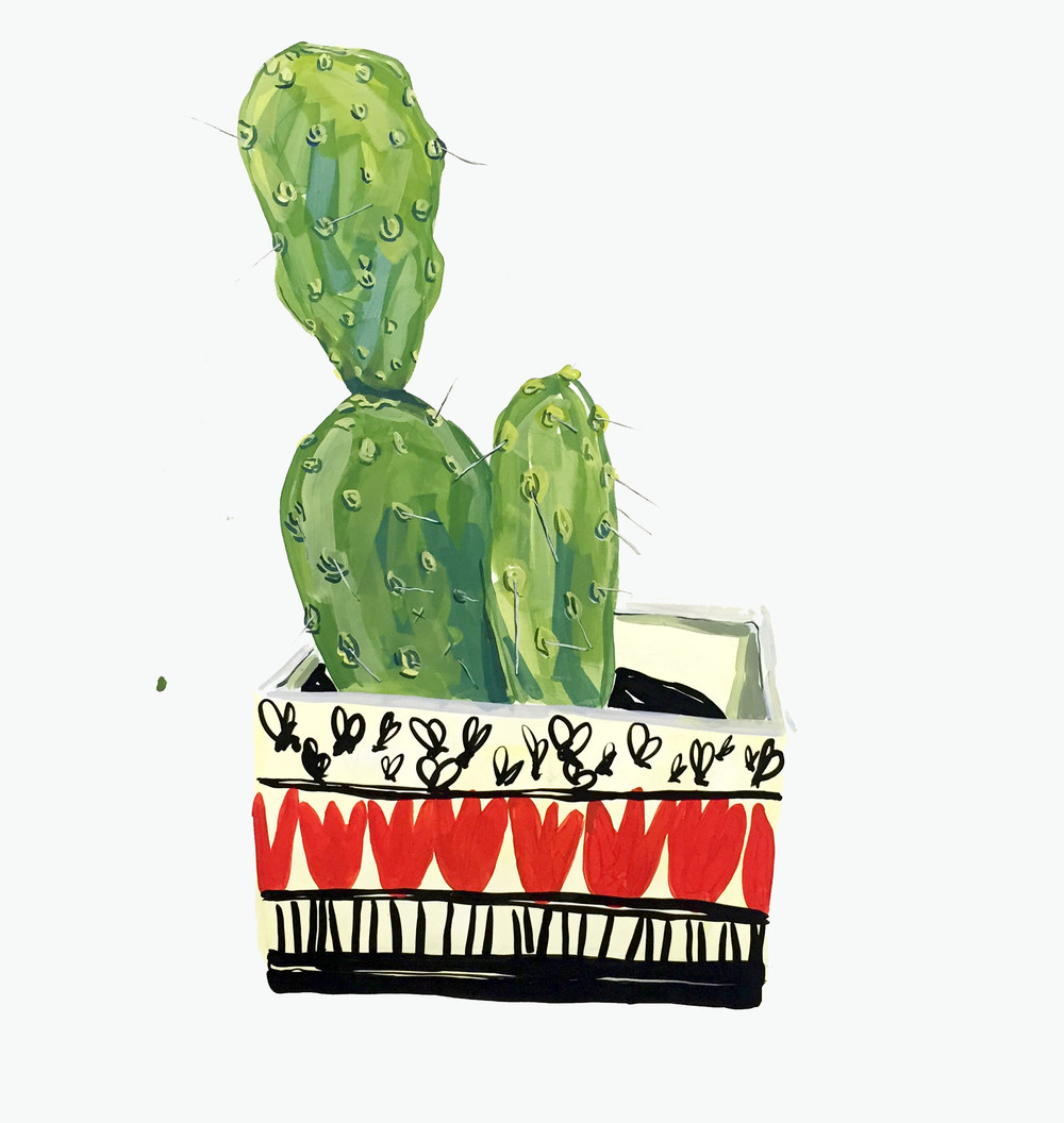 Mothers day cactus from home depot with color me mind hand painted pot
