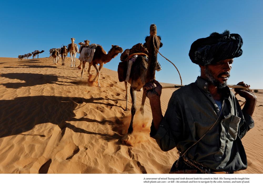 Tuaregs MM7761_48-5.jpg