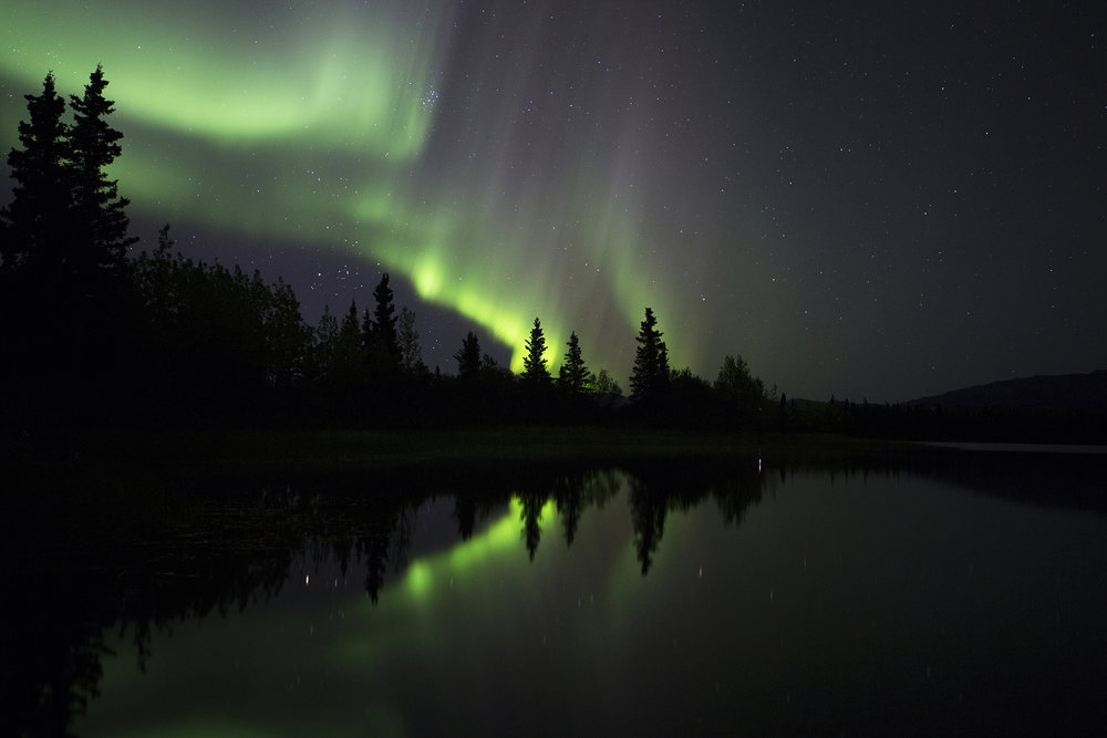 Aurora Borealis also known as the Northern Lights, are collisions between gaseous particles in the Earth's atmosphere with charged particles released from the sun's atmosphere seen from the shore of Otto Lake a couple miles from Healy, Alaska. © Photo by Gail Fisher