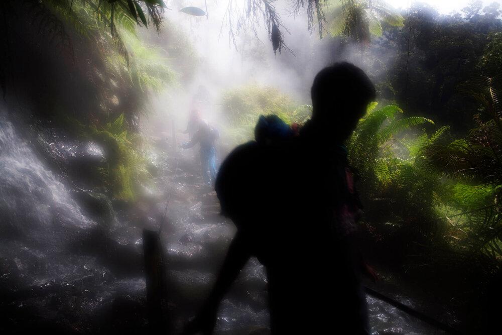 Cibodas National Park, Java, Indonesia © Gail Fisher