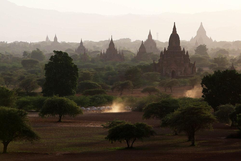 Bagan, Myanmar (Burma) © Gail Fisher