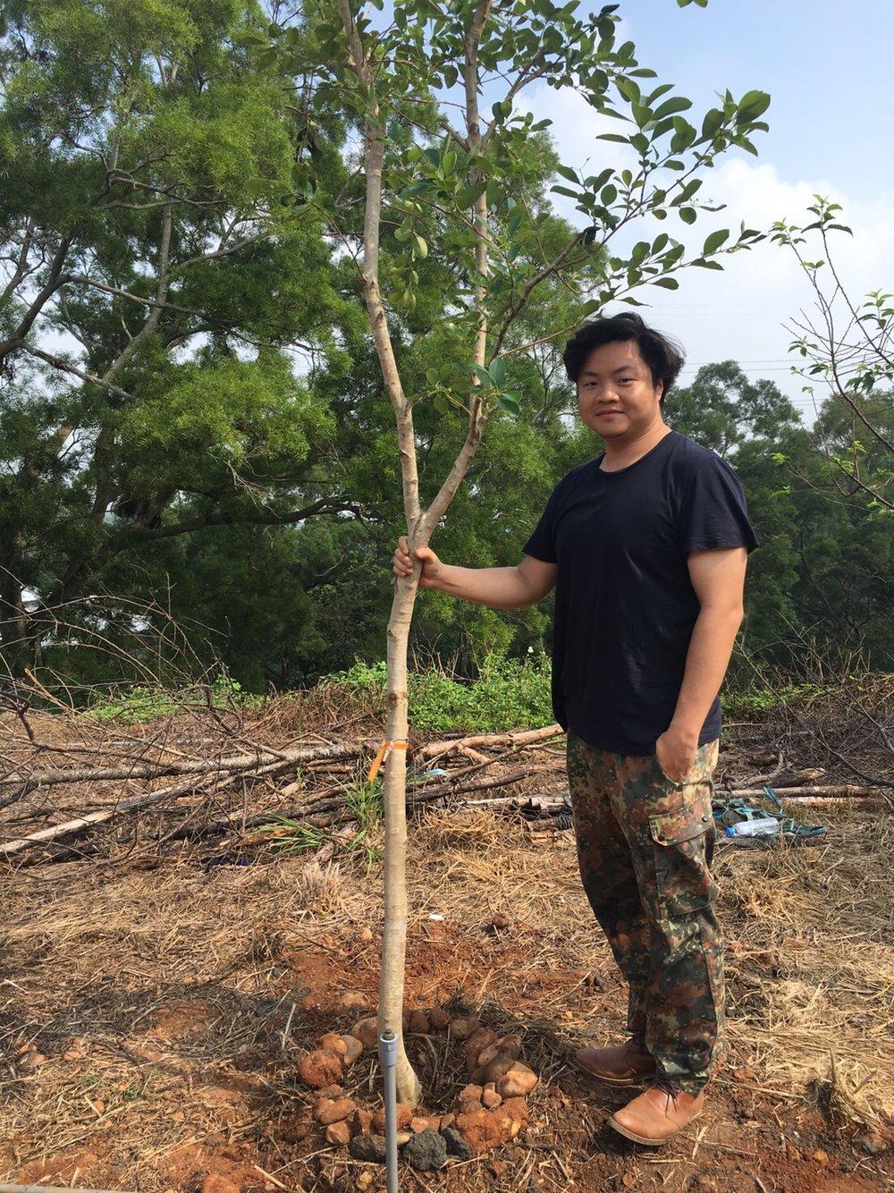種樹-種下對這片土地的熱情