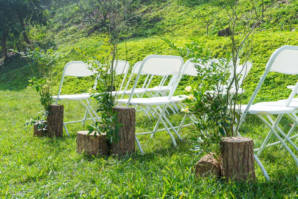 森林小徑網頁用-5.jpg