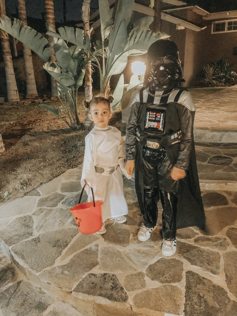darthvaderandprincessleia.jpg