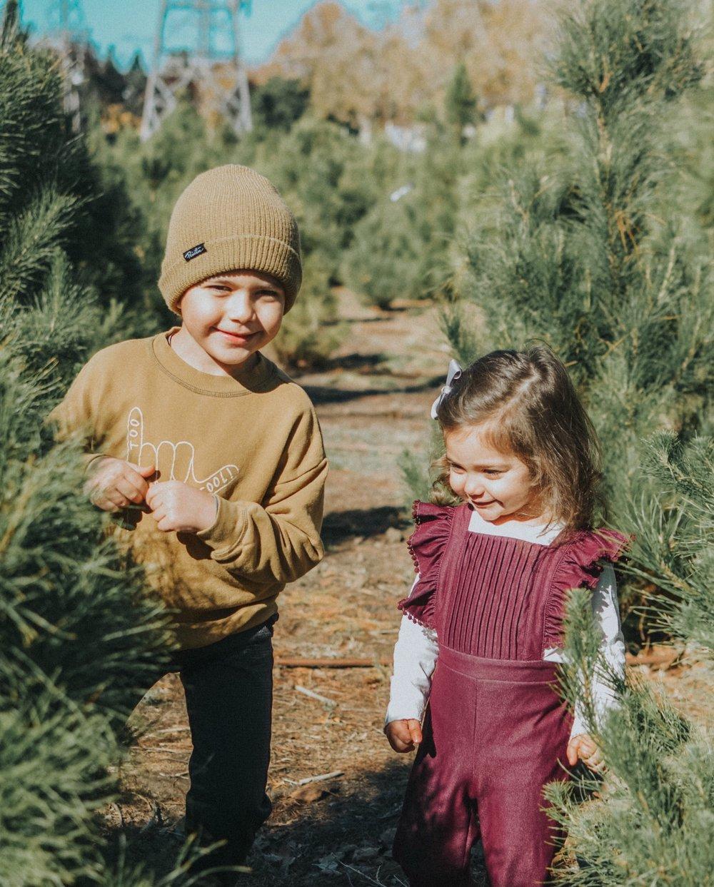 christmas siblings.JPG