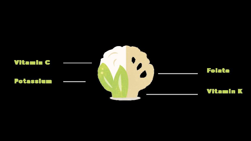 Cauliflower-02.png