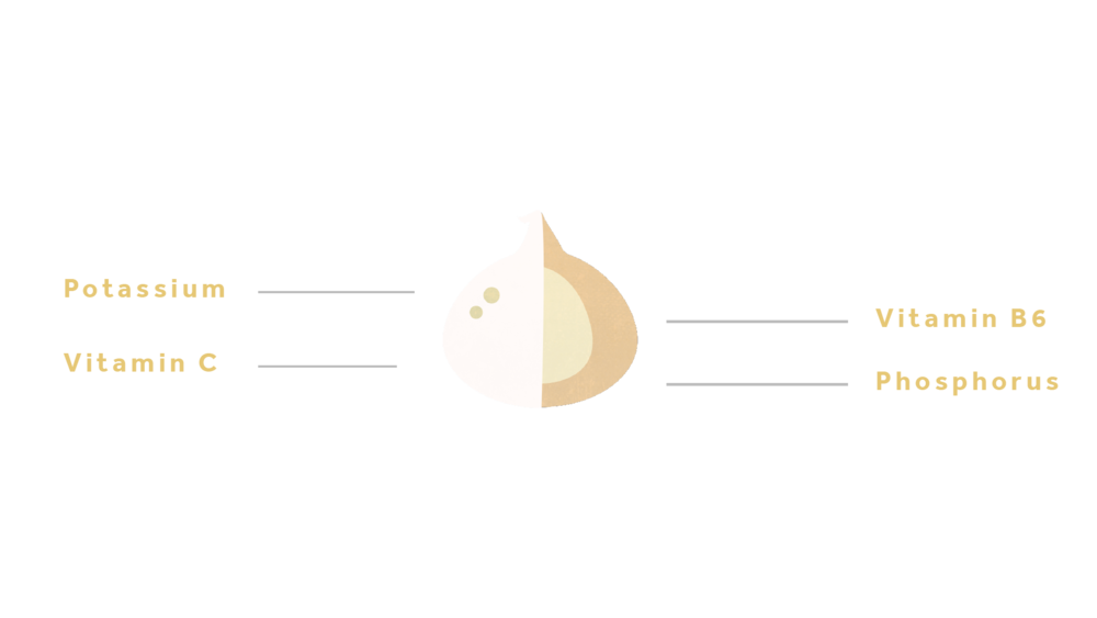 Garlic-01.png