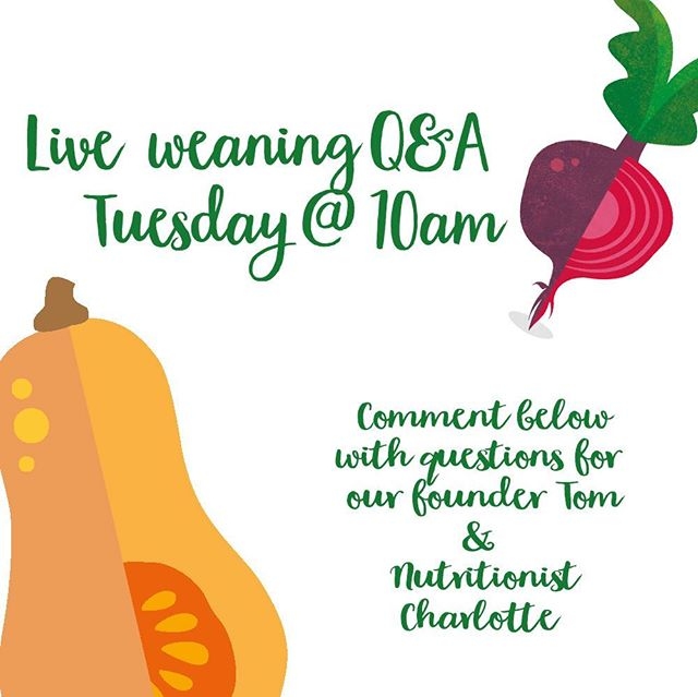 Wondering when to introduce textures? How much fruit is too much? 🍓🍍🍌 Are they eating enough? 🧐 Tom and our nutritionist Charlotte will be ready and waiting on Tuesday morning to answer any burning questions and offer tips and advice on everything and anything weaning related. Comment and post your question below or tune in live Tuesday morning at 10am. . . #babease #weaningtips #weaningideas #complementaryfeeding #babyledweaning #textures #flavour #firstfoods #firsttastes #mum #dad #Q&A #foodies