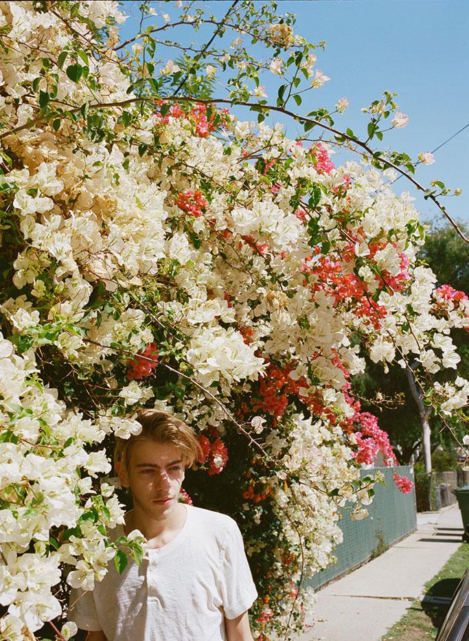 nick_flowers_683.jpg