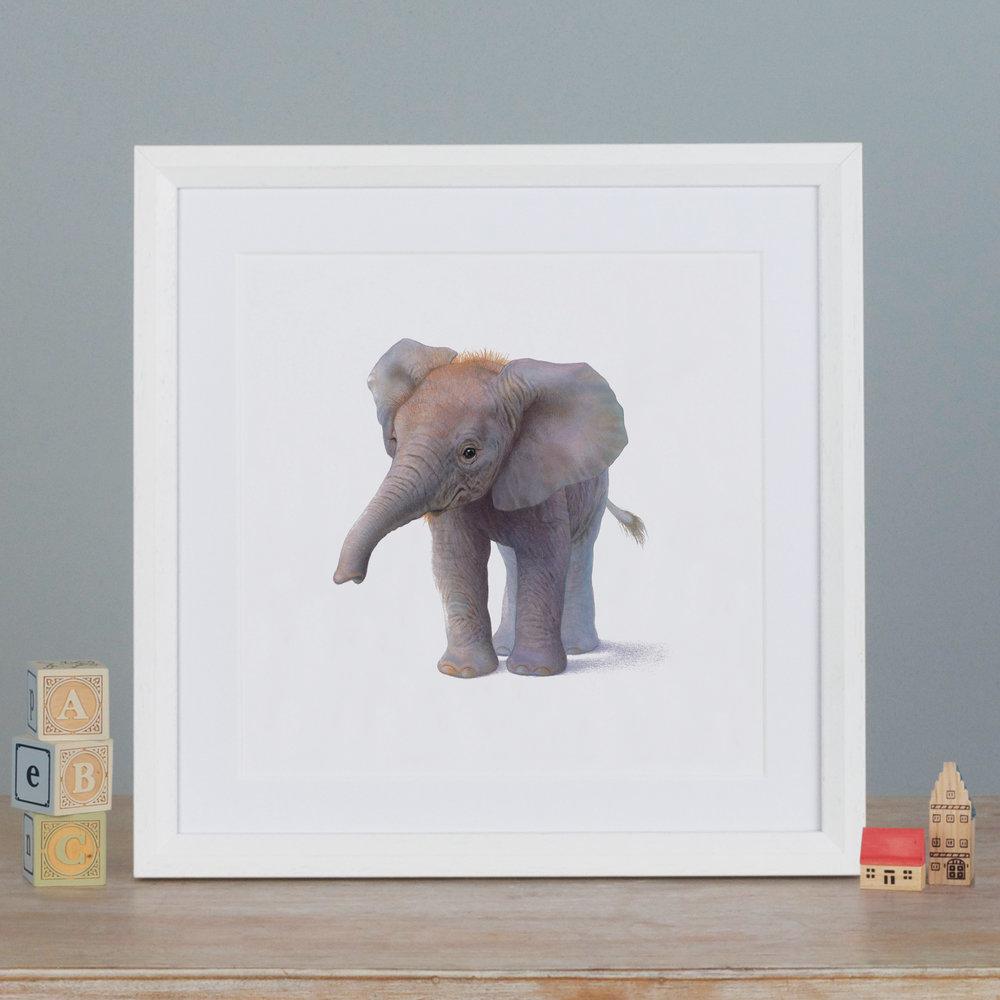 ANIMAL PRINTS  £16