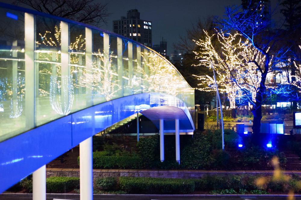Tokyo Mid-town, Roppongi, Tokyo Summicron 35/2 ASPH Leica M-E ISO2500