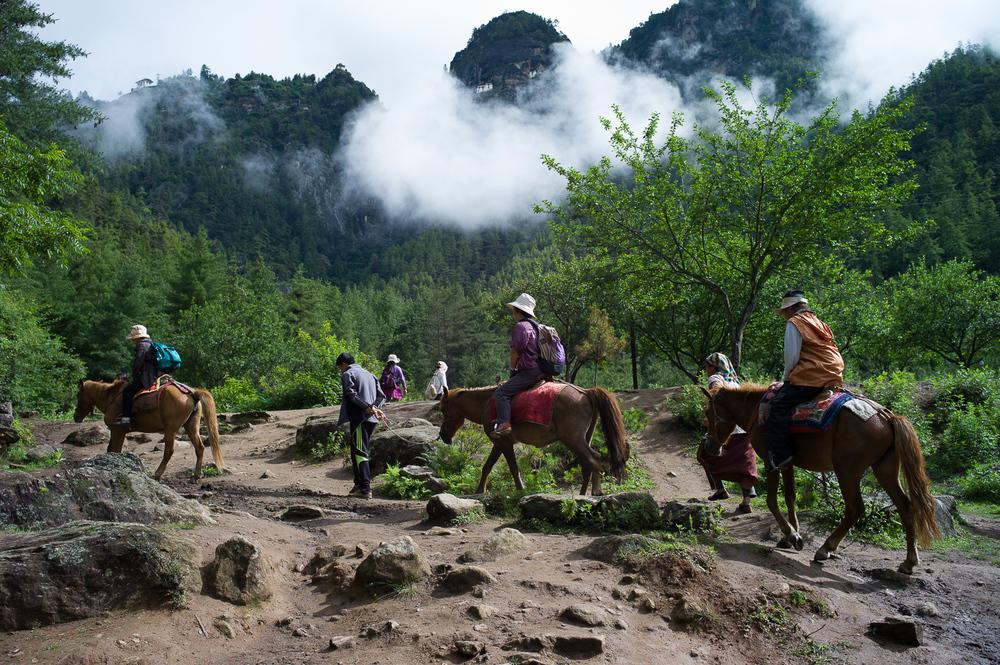 Horseride to Paro Taktsang