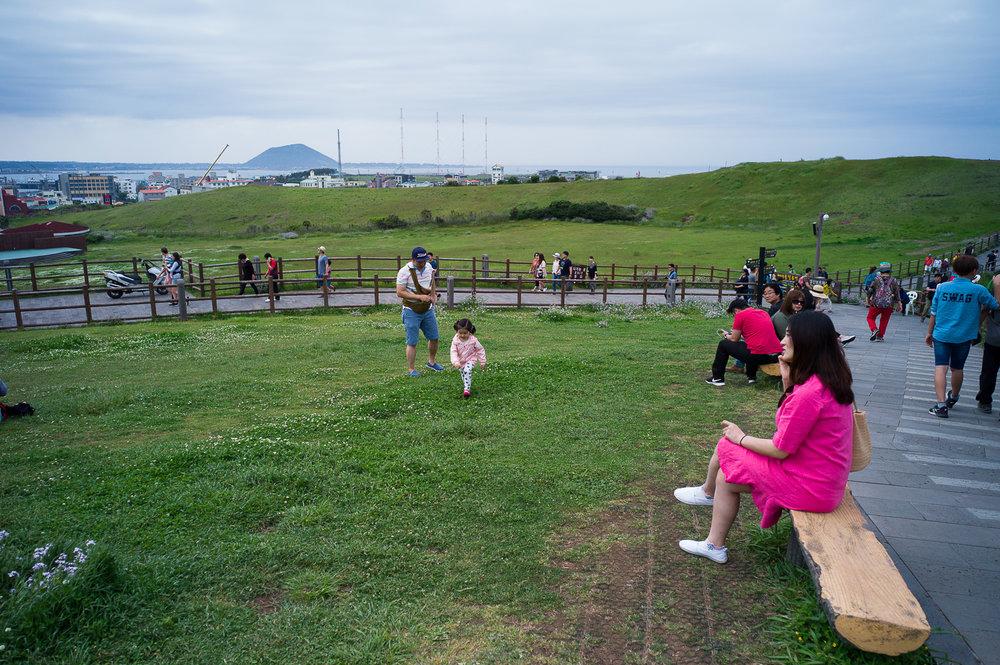 Pink lady,Seongsan Ilchulbong Peak