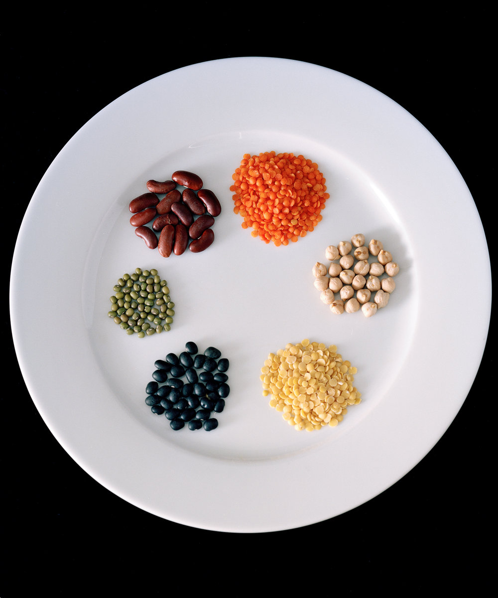Culture Handbook No. 009 (vegetarian staples; red lentils, chicpeas, yellow split peas, black beans, mung beans and kidney beans), 2017