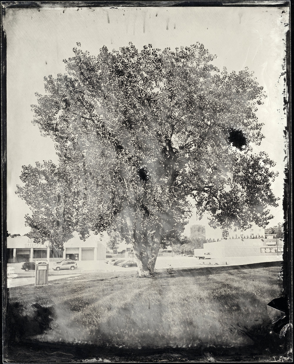 St. Louis Ambrotype No. 065