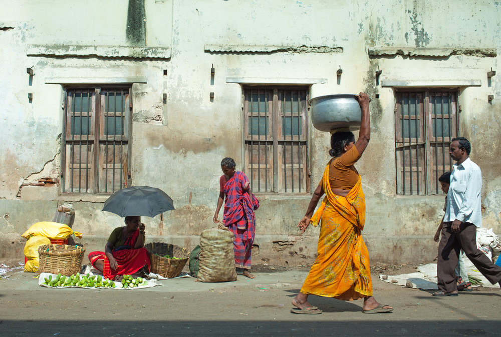 India2013-6324.jpg