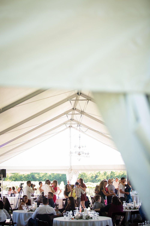 Brandon_Shafer_Photography_Kara_Doug_12_corners_Wedding_Benton_Harbor_0071.jpg