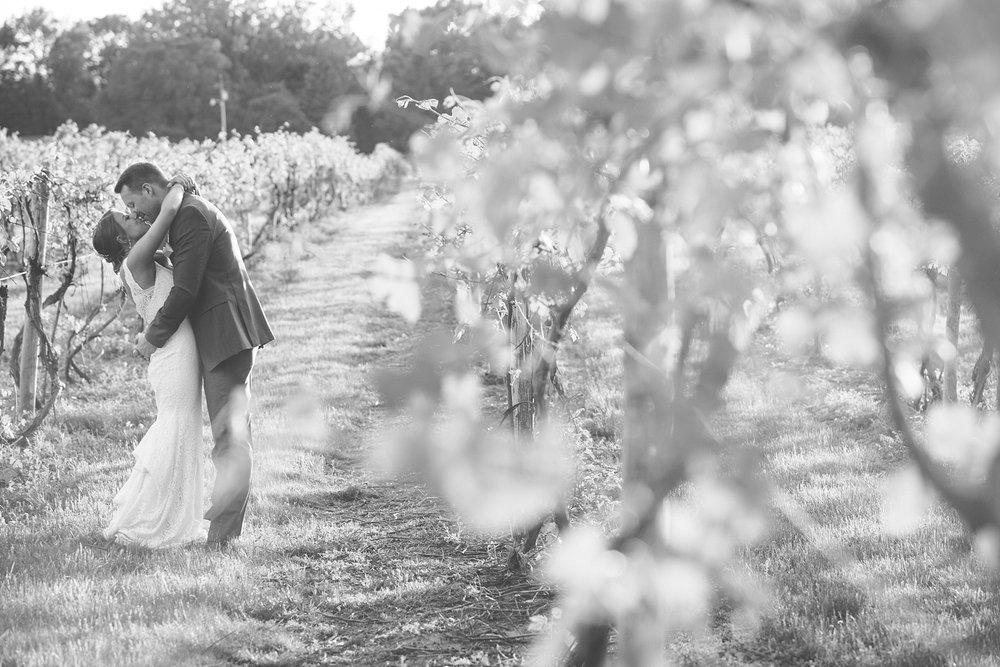 Brandon_Shafer_Photography_Kara_Doug_12_corners_Wedding_Benton_Harbor_0084.jpg