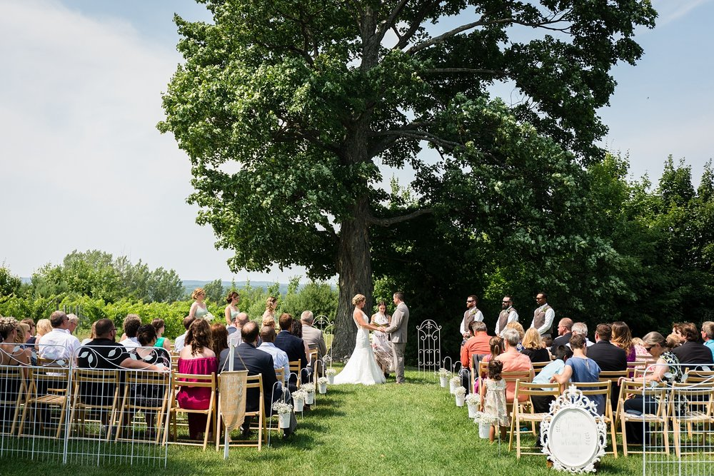 Brandon_Shafer_Photography_Lauren_Vasile_Ciccone_Vineyard_Suttons_Bay_Wedding_0021.jpg