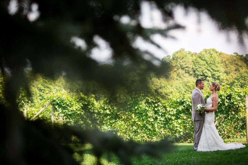 Brandon_Shafer_Photography_Lauren_Vasile_Ciccone_Vineyard_Suttons_Bay_Wedding_0041.jpg