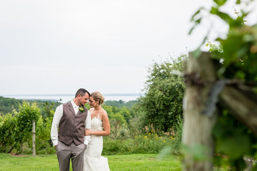 Brandon_Shafer_Photography_Lauren_Vasile_Ciccone_Vineyard_Suttons_Bay_Wedding_0059.jpg