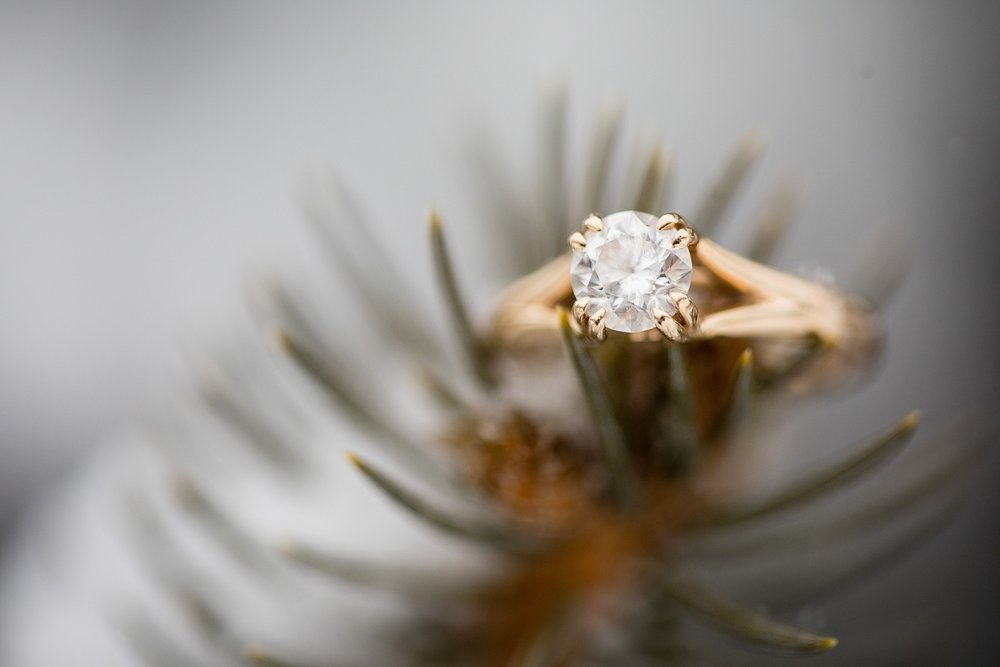 Brandon_Shafer_Photography_Winter_Engagement006.JPG