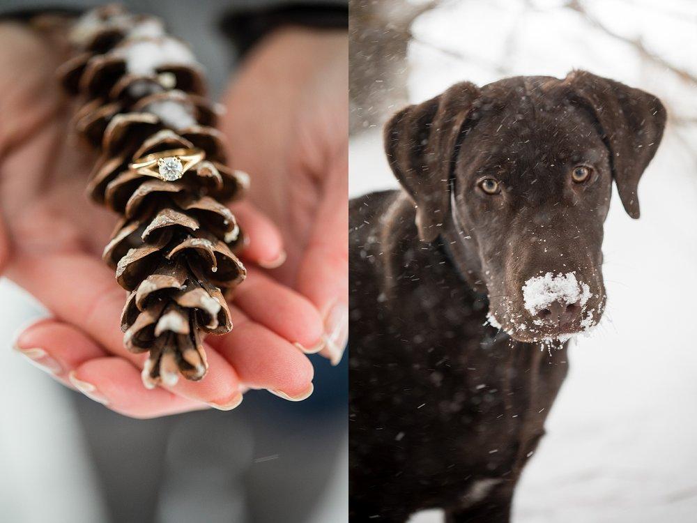 Brandon_Shafer_Photography_Winter_Engagement013.JPG