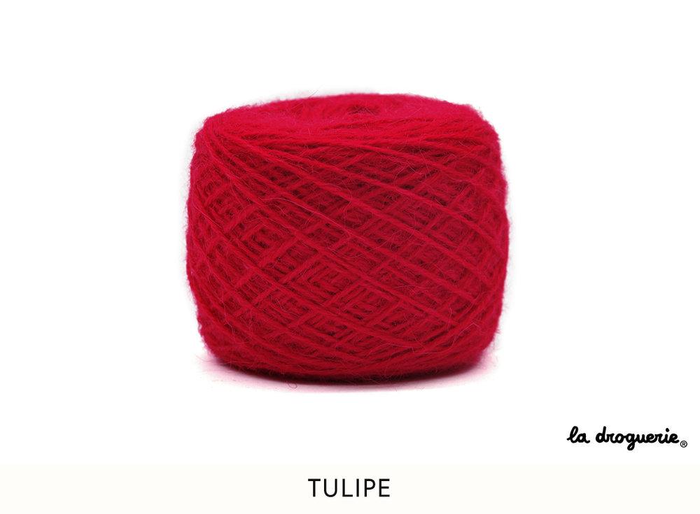 1 tulipe.jpg