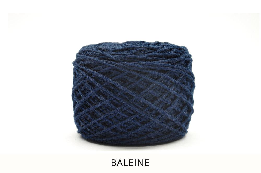05 Baleine.jpg