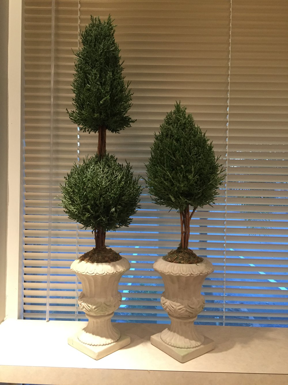 Small trees $15 (both)