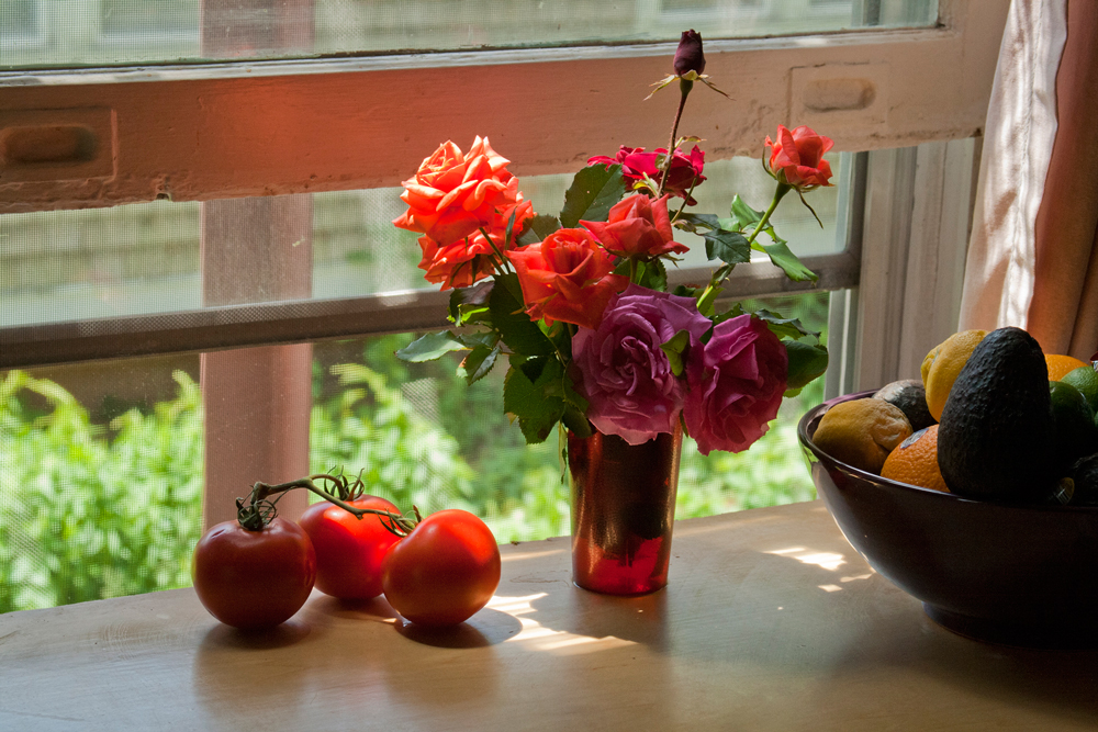 Roses and Tomatoes