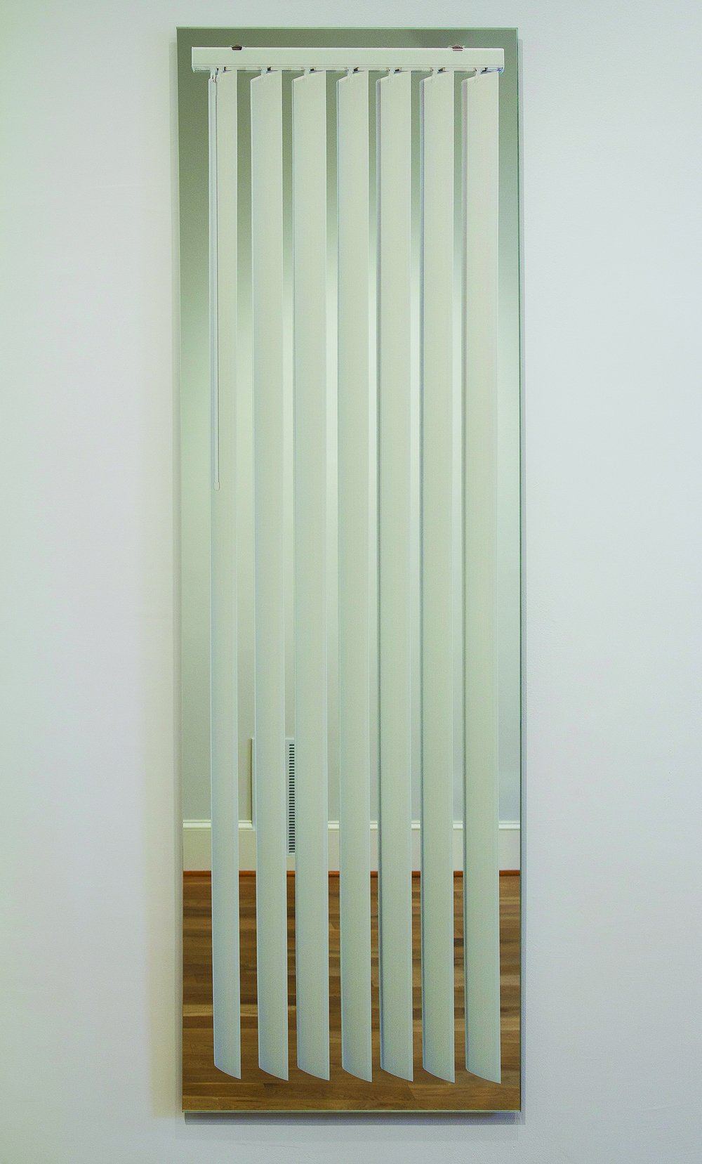LisaDillin_Window_E Vertical_Blinds_on_Mirror_2012.jpg